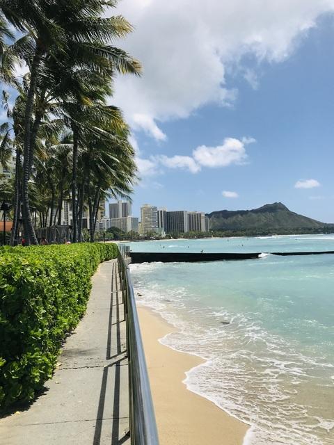 ハワイ4.jpg